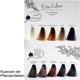 Farbkarte Erbe Colore/Organic Pigments